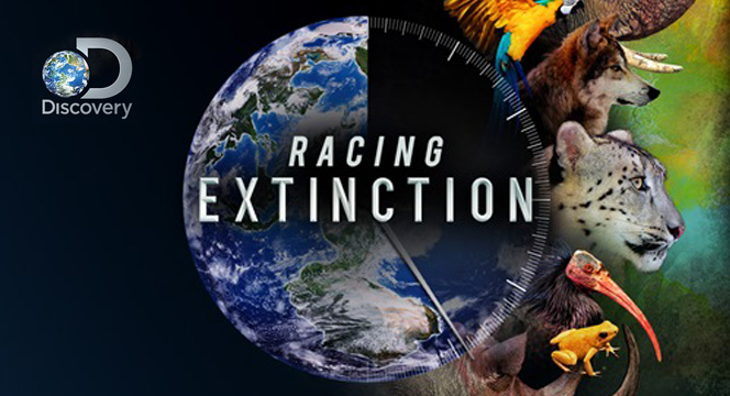 Racing Extinction Impact Docs